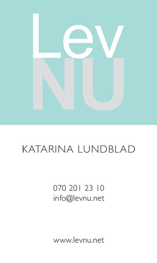 Business Card Design anweb LevNU