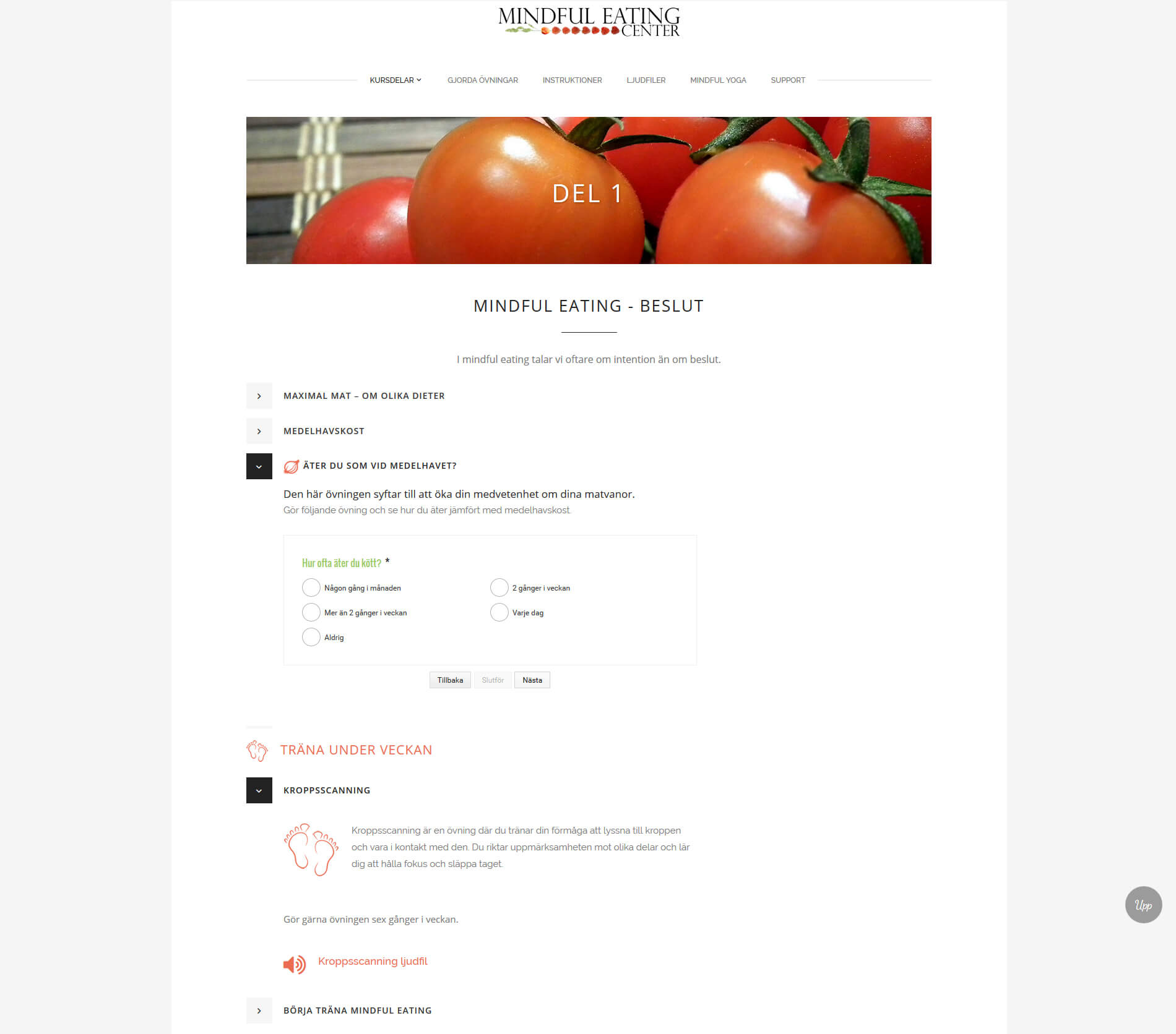 Web design anweb Mindful Eating E-course